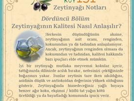 Zeytinyağının Kalitesi Nasıl Anlaşılır?