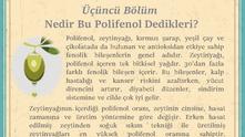 Nedir Bu Polifenol Dedikleri?