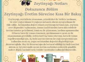 Zeytinyağı Üretim Sürecine Kısa Bir Bakış