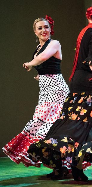 flamenco 1 matt bynum 1_edited.jpg
