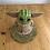 Thumbnail: Baby Yoda Cake (serves 15-20)
