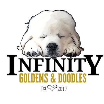 InfinityGoldens&Doodles_Logo.png