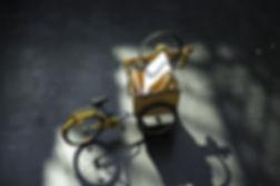 arrival_bike_p2m0792.jpg