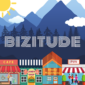 Bizitude.com