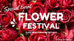 Visual Content - Flower Festival