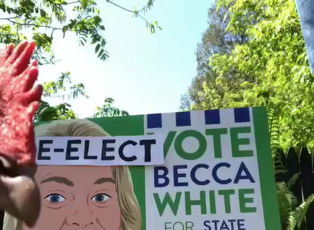 Re-Election Campaign Video!