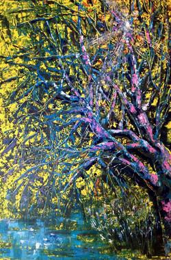 Sunrise Tree2