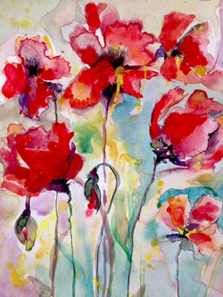 Poppies / Watercolor