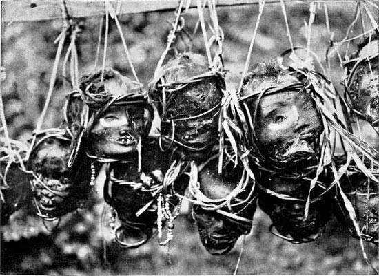 Tradisi Kayau