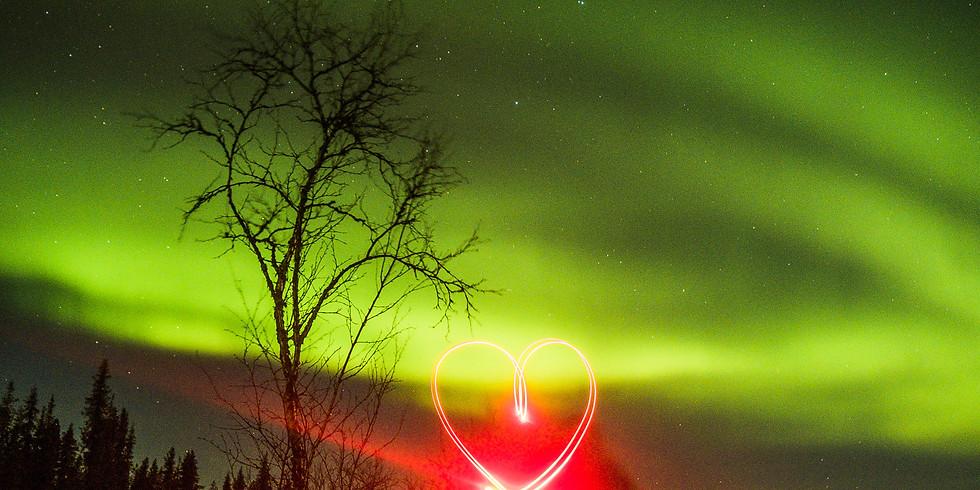 Kurs Nordlichter fotografieren Kiruna / Jukkasjärvi (5)