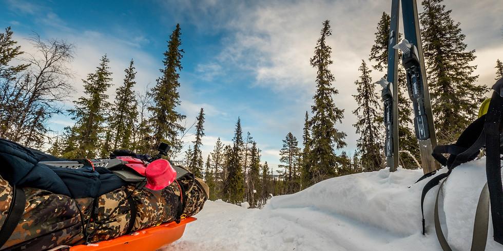 Mit Pulka durch die Wildnis Lapplands