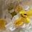 Thumbnail: 2oz Blossom Oil