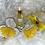 Thumbnail: 1oz Shine Blossom Oil