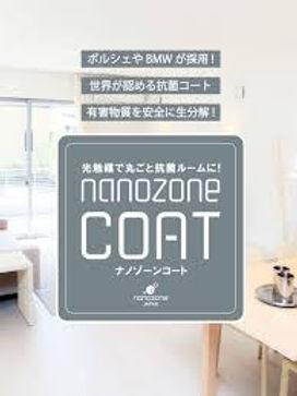 nanozone.jpg