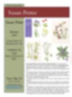 Susan Pettee History of Botanical Art  (