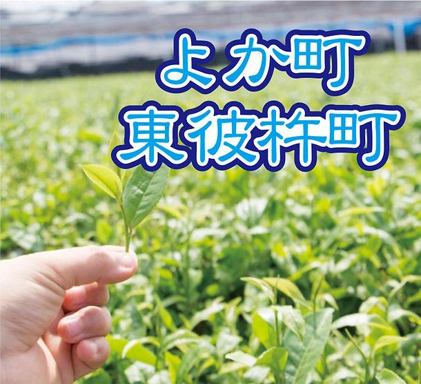 東彼杵表紙.jpg