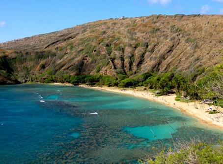 Descubra onde fica Hanauma Bay, a praia mais espetacular do mundo