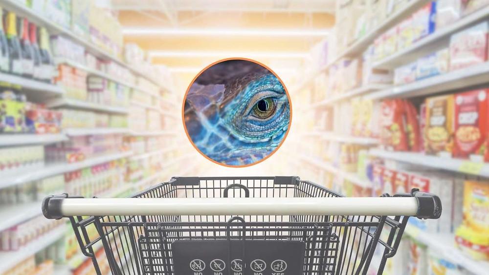 O monstro da inflação. Como controlar? Como se proteger?