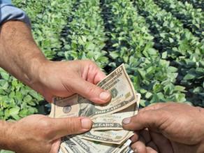 4 motivos para você não aceitar pagamentos informais em moeda estrangeira