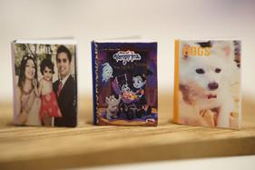 Custom Dollhouse Books