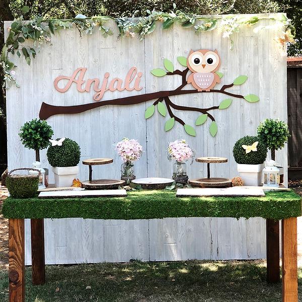Owl Theme Birthday