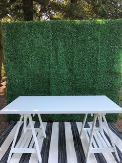 Hedge Wall w/ Table