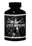 Liver and organ_edited.png