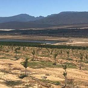O desafio da seca na África do Sul