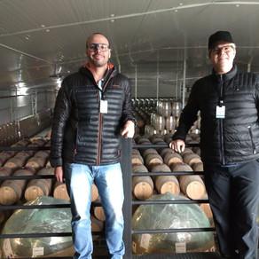 Mercado de vinhos celebra expansão recorde