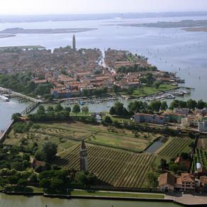 Enchente ameaça últimas vinhas nativas de Veneza