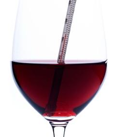 Qual a temperatura para servir vinho?