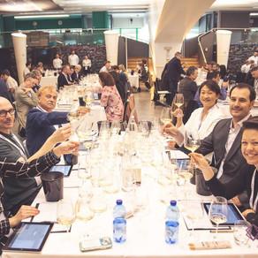 Brasil estreia no 5Star Wines 2019