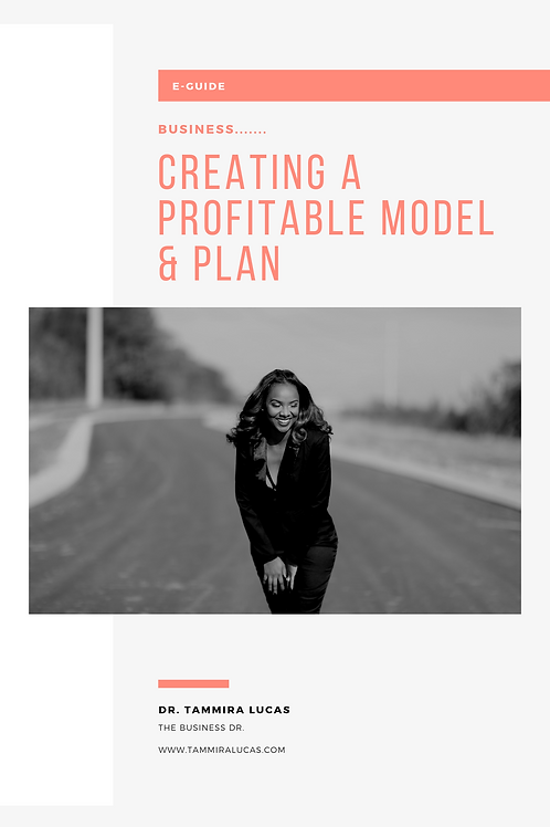 Business...Creating a profitable model & plan