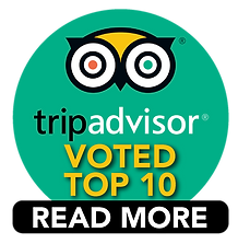 Top 10 Trip Advisor.png