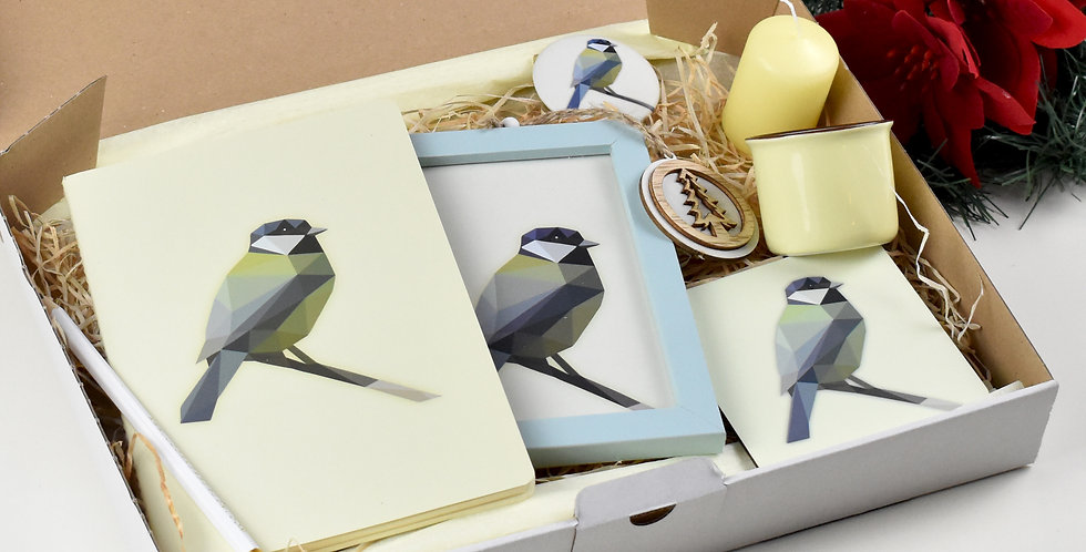 The Great Tit Christmas kit.