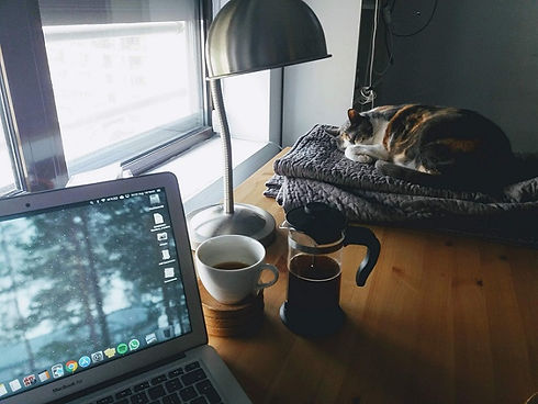cat-and-computer-by-window-gray-day.jpg