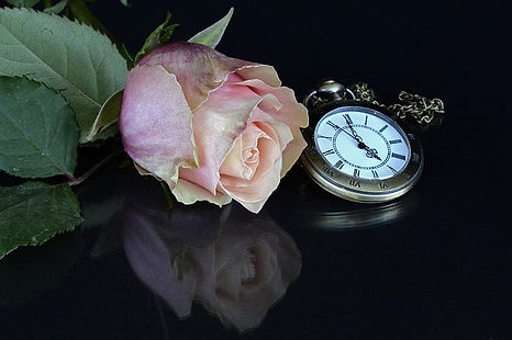 pink-dried-rose-with-pocket-watch.jpg