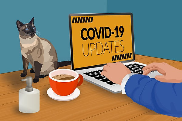 covid-19-update-sign-and-cat-image.jpg