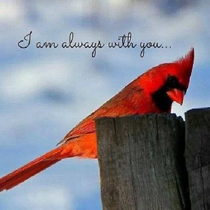 Cardinal-always-with-You.jpg