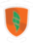fei-pi-triathlon-logo-2015.png