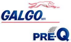 Galgo Pre Q Logo.png
