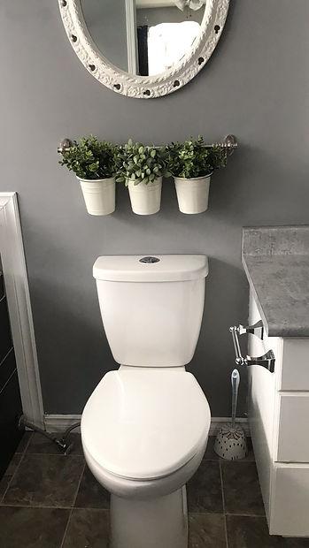 toilet_edited.jpg