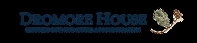 DROMORE HOUSE LOGO horizontal.png