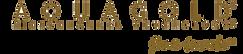 Aquagold Microchannel Logo_V3-01.png
