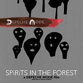 665cad-20191102-depeche-mode-spirits-in-