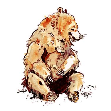 Bear copy.png