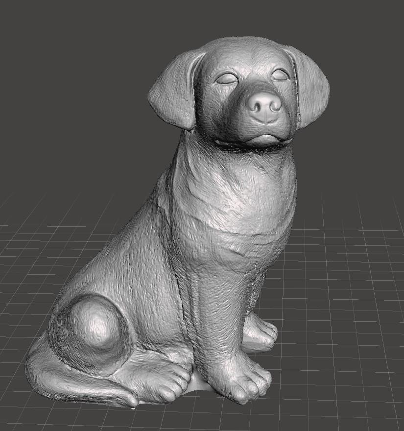 Labrador Scan