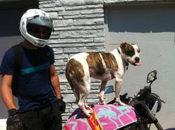 Dane and Daytona