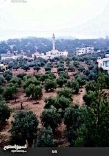 ارض زراعيه في منطقة ماحص حي الميدان الحي الجنوبي للبيع