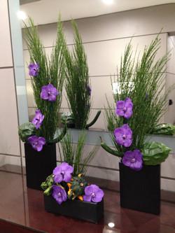 Residential Flowers